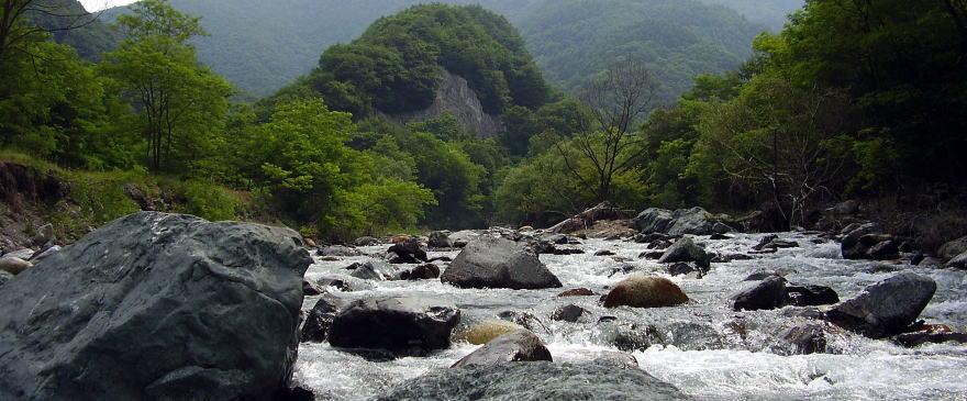 渓流釣り 長野